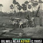 Oill-Mill-Near-adyar-1905-4